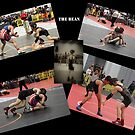 Wrestling Collage by WeeZie