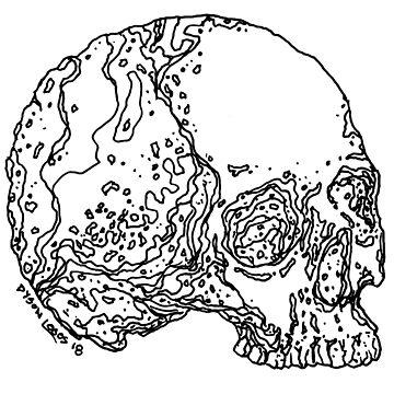 Skull Variations #4 by DysonLogos