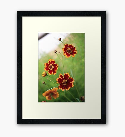 Have A Great Day! Framed Print