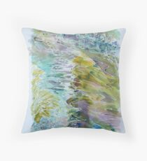 Plym waters1 Throw Pillow