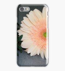 Single Gerbera iPhone Case/Skin
