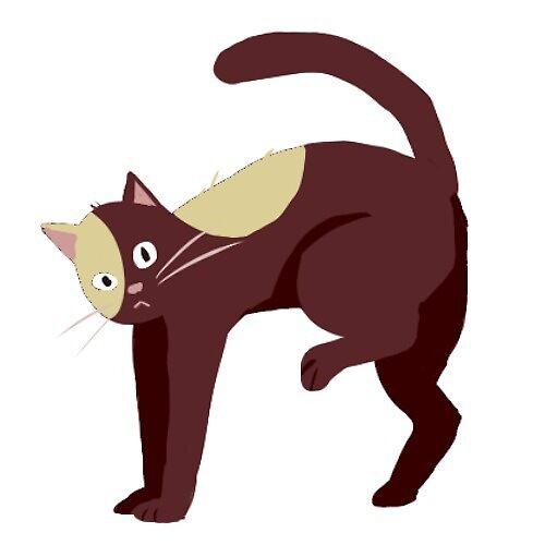 scaredy brown cat sticker by Amanda Pszczolkowski