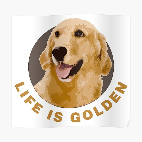 Life Is Golden, Retriever That Is Poster
