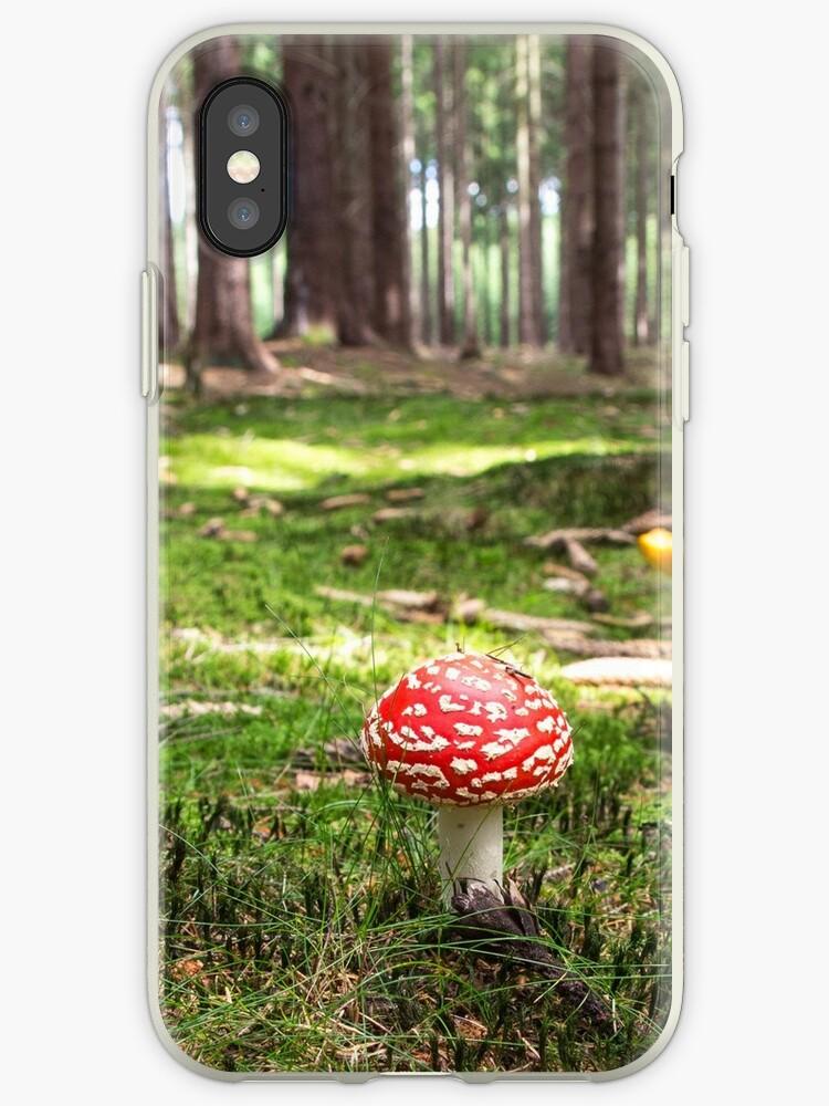 Little Mushroom, Big Forest by EricStanley