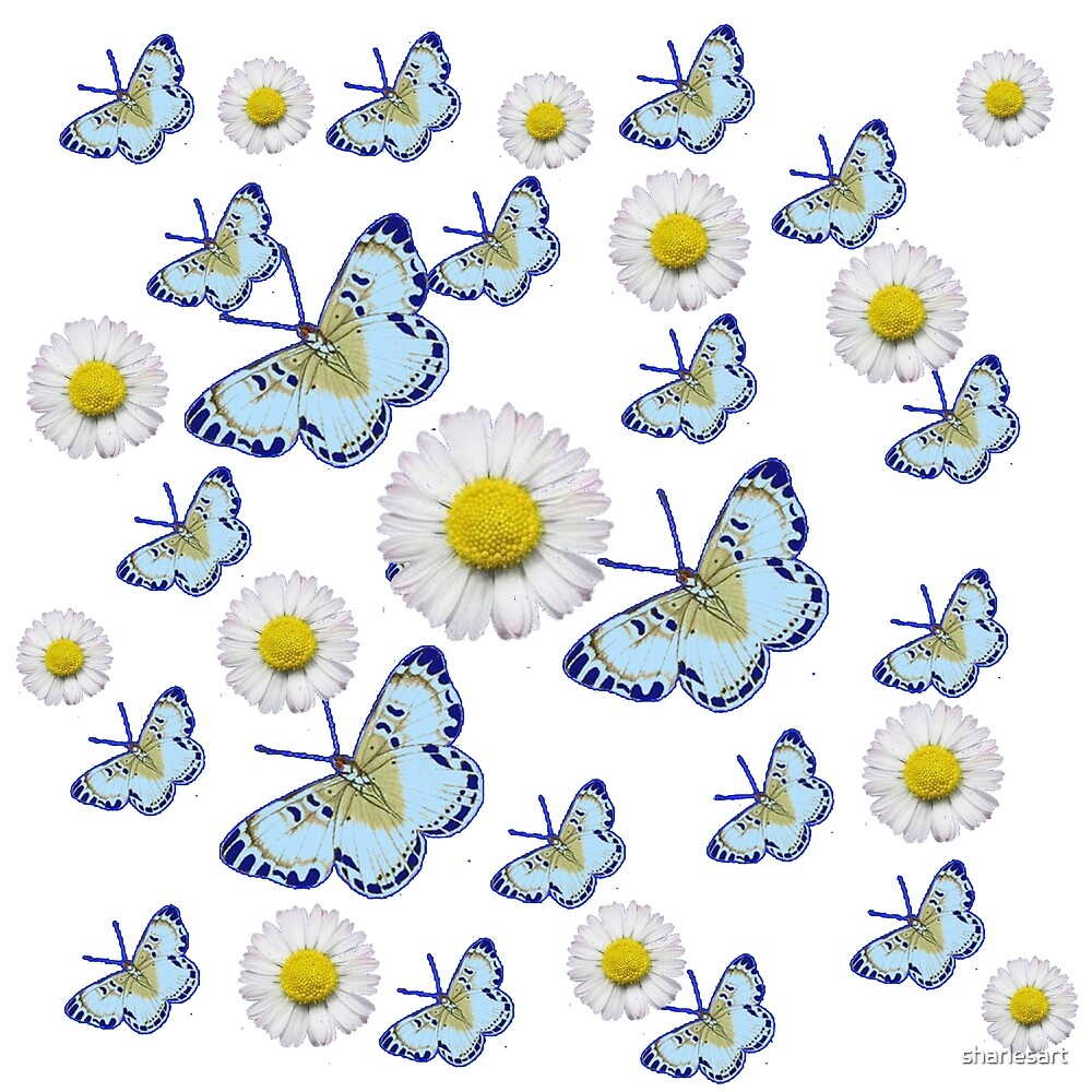 White Shasta daises & oriental butterflies  by sharlesart
