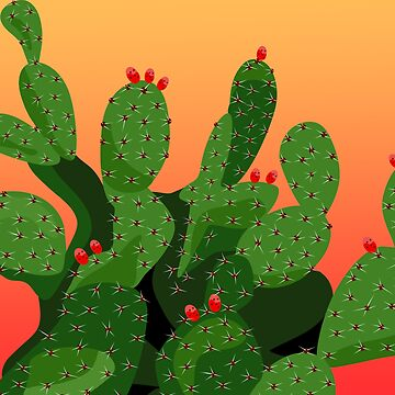 Prickly Pear Cactus Desert Sunset by redwindy