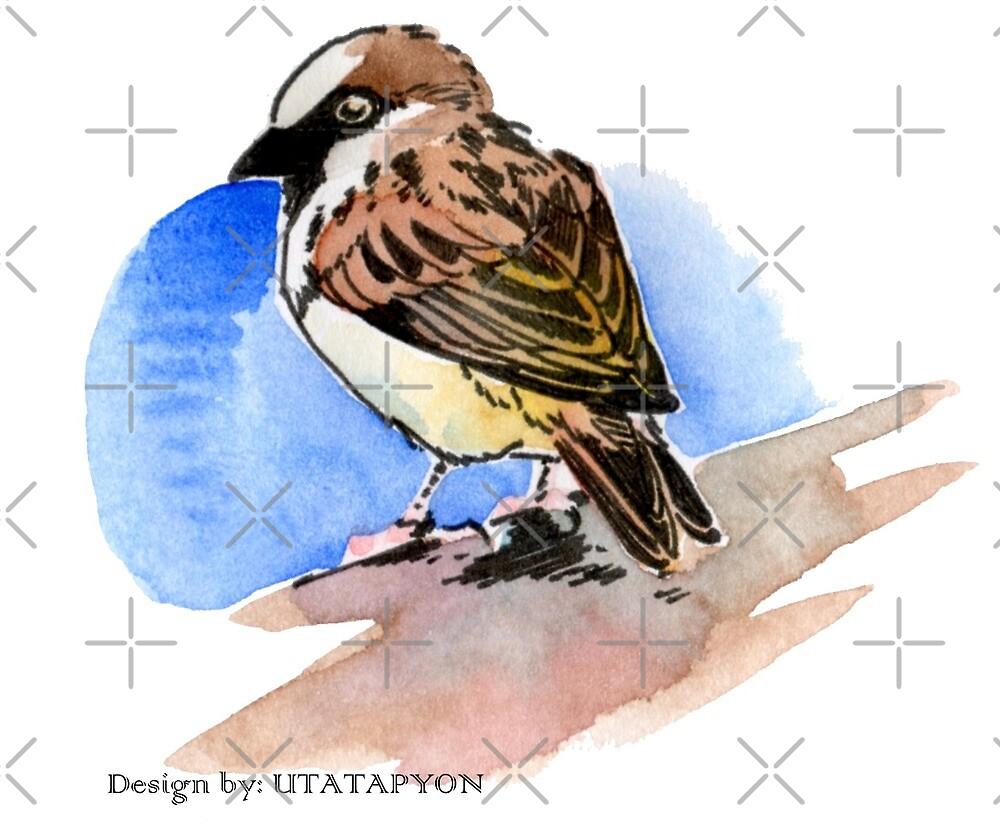 Sparrow by utatapyon