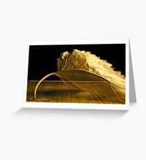 ¨Transparency¨ Greeting Card