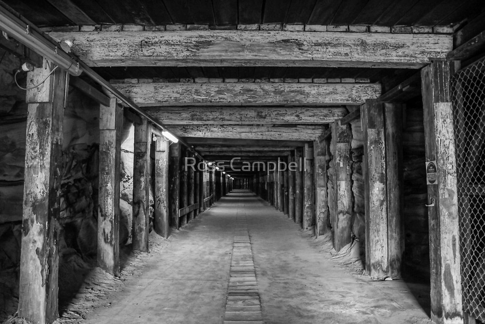 Old Dog Leg Tunnel, Cockatoo Island, Sydney by Ross Campbell
