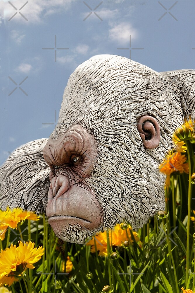 George, The Friendly Gorilla In My Garden! by Heather Friedman