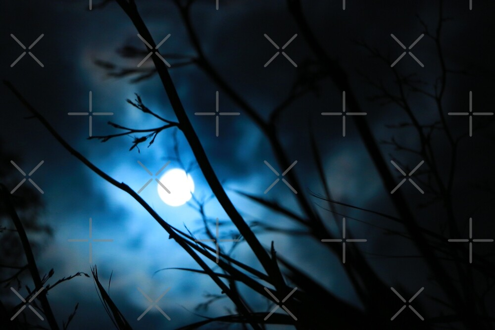 Moon at Midnight by Mombre