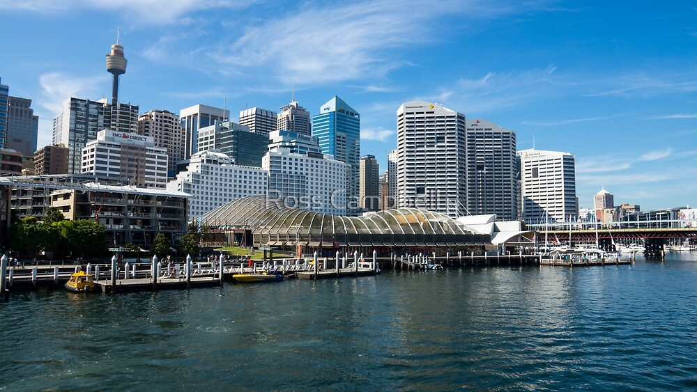 Darling Harbour, Sydney by Ross Campbell