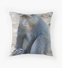 Blue Monkey,Lake Manyara, Tanzania  Throw Pillow