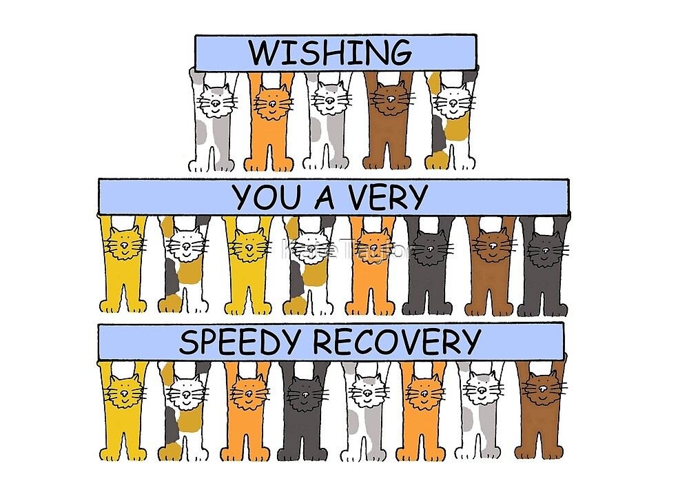 Cartoon Cats Wishing you a Speedy Recovery. by KateTaylor