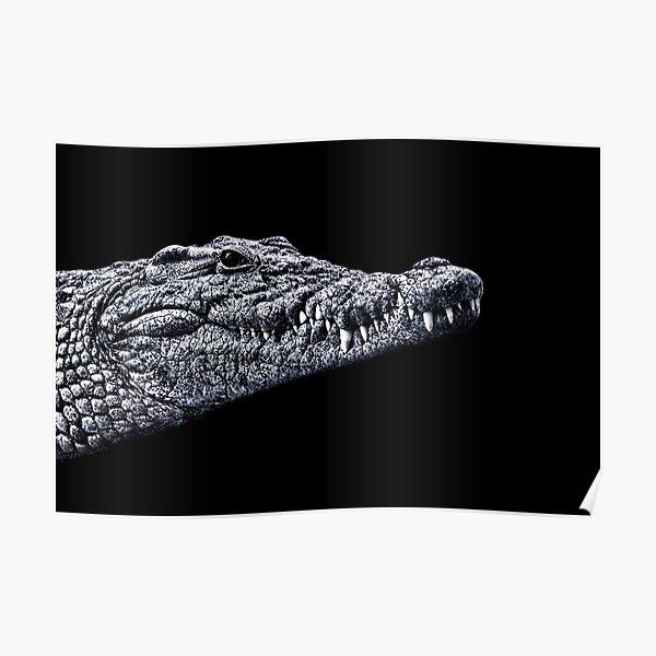 Crocodile Portrait Fine Art Print Poster
