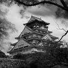 Osaka Castle by Simon Read