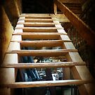 up to the attic  by Bine