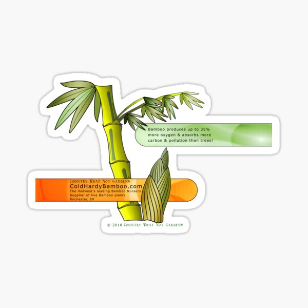 Cold Hardy Bamboo Sticker