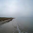 Overcast Beach by vonb