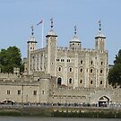 Tower of London  by Martina Nicolls