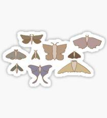 Moth Friends V2 Sticker