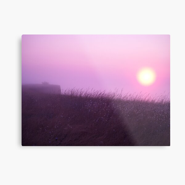 Early Morning in the Fog Metal Print