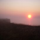 From under the blanket of fog towards the morning sun by Anthropolog