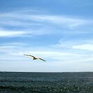 Sky and Sea by mooner1