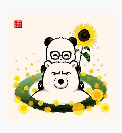Bears and Sunflowers Photographic Print