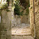 Provence 8 by mindfulmimi