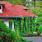 Portland Garden by KirtTisdale