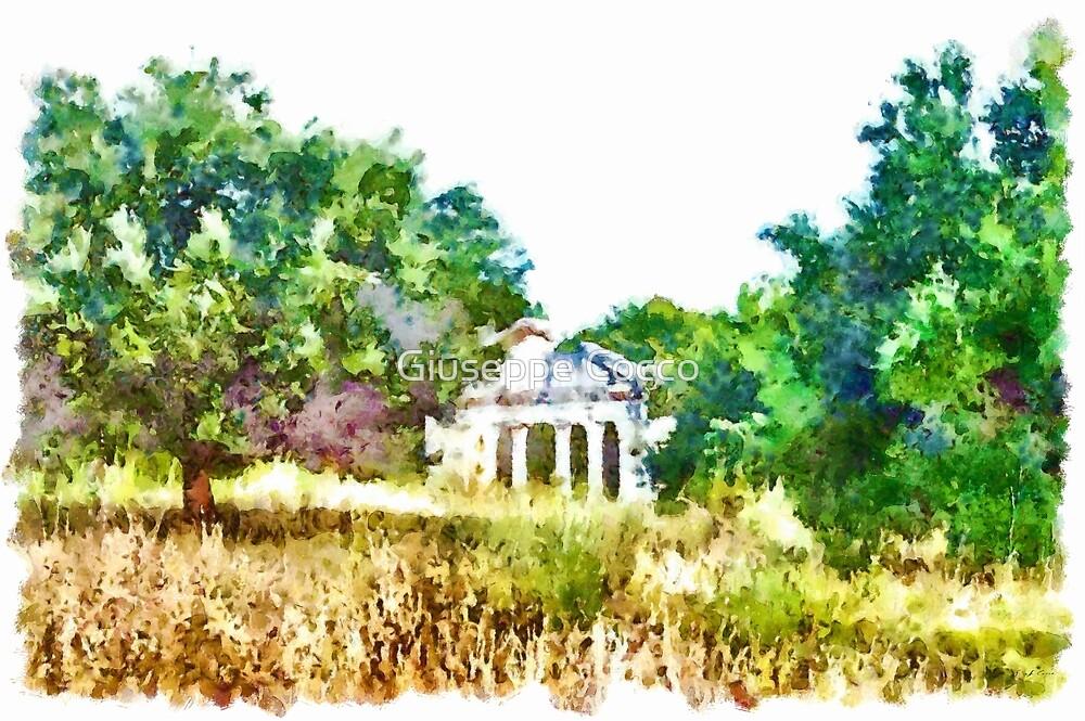 Albania: archaeological area of Apollonia by Giuseppe Cocco