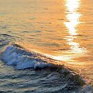Morning Wave by Dawne Dunton