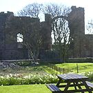 Priory window, Lindisfarne by Ian Lyall