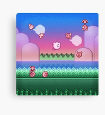 Kirby Level One Canvas Print