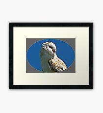 """BIRDS OF PREY"" Framed Print"
