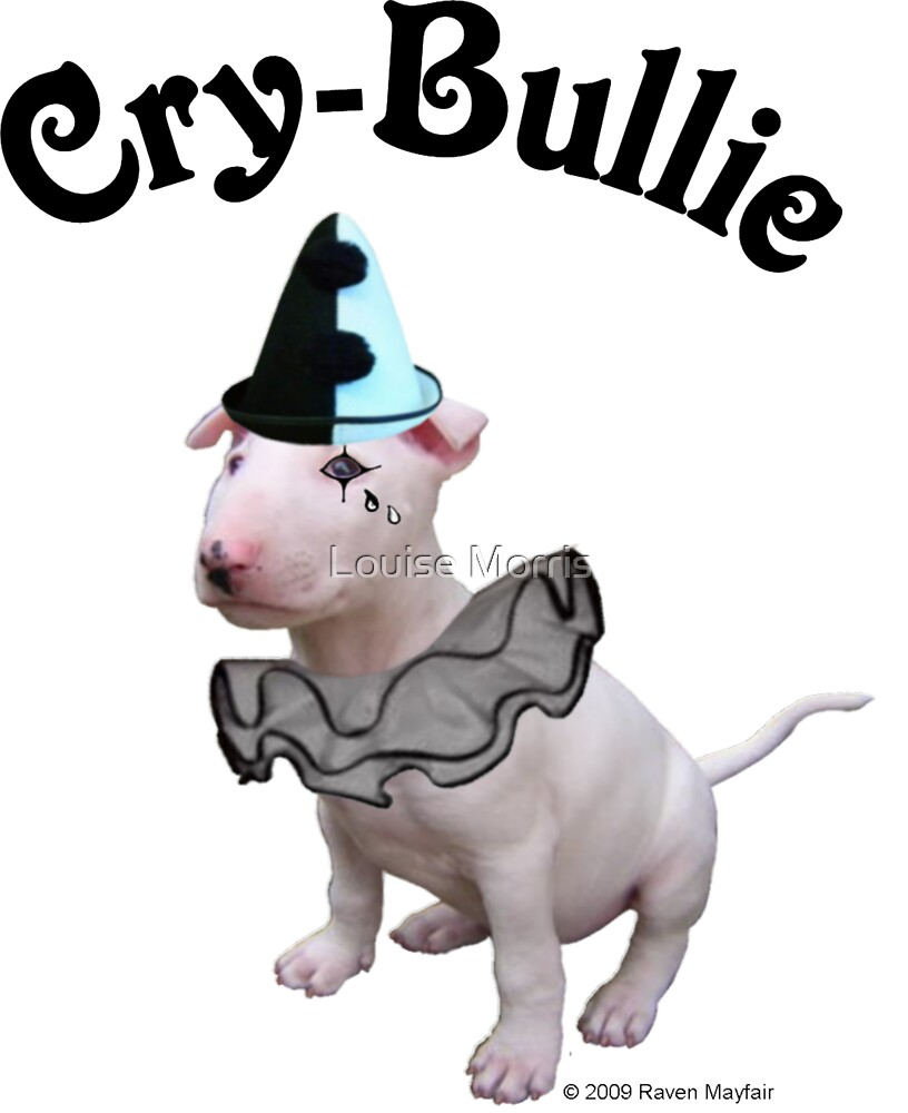 Cry Bullie by Louise Morris