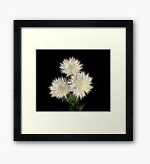 Electric Flowers! Framed Print