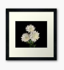 Electric Flowers! Framed Print