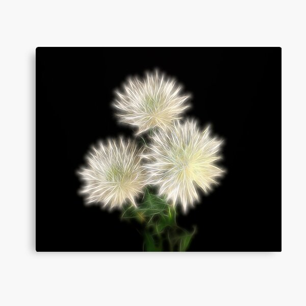 Electric Flowers! Canvas Print