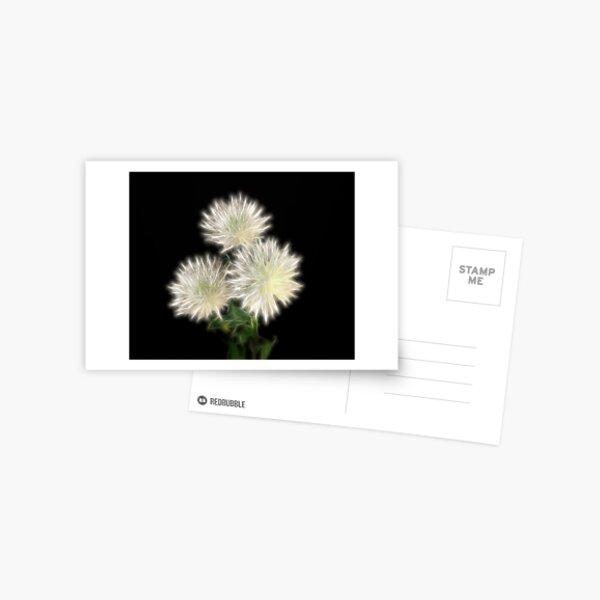 Electric Flowers! Postcard