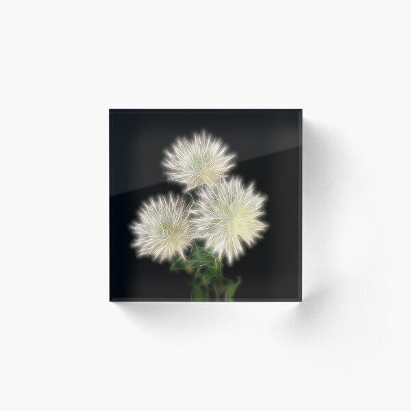 Electric Flowers! Acrylic Block