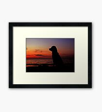 Evocative Framed Print