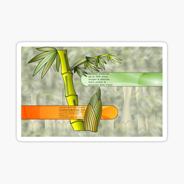 Bamboo Graphic - Sustainable Resources Sticker