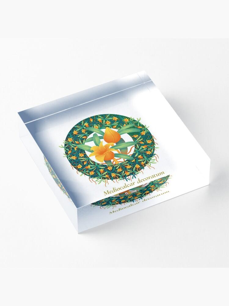 Alternate view of The Circles of Life: Mediocalcar decoratum Acrylic Block