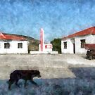 Albania: builings and dog at Malakastra by Giuseppe Cocco