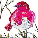 Fat Rose Bird by Kellie Raines