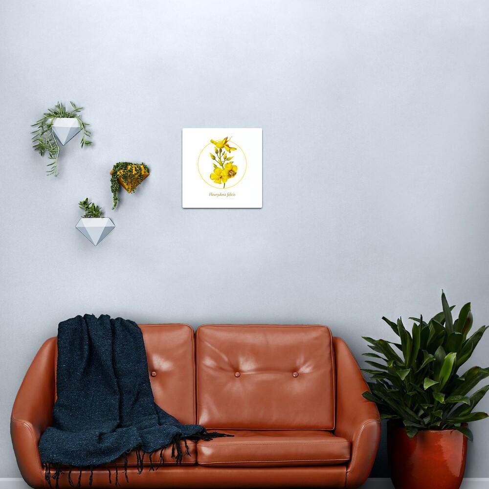 The Circles of Life: Fleurydora felicis Metal Print