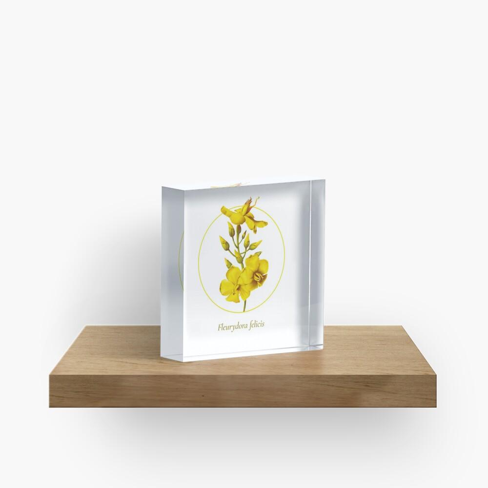 The Circles of Life: Fleurydora felicis Acrylic Block