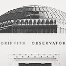 Griffith Observatory by Ann Hudec